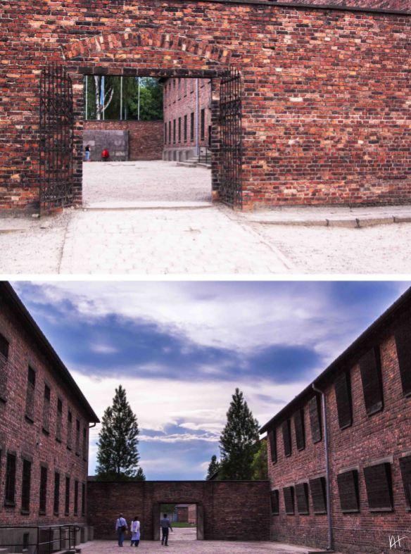 selah_candace_rose_Auschwitz_07