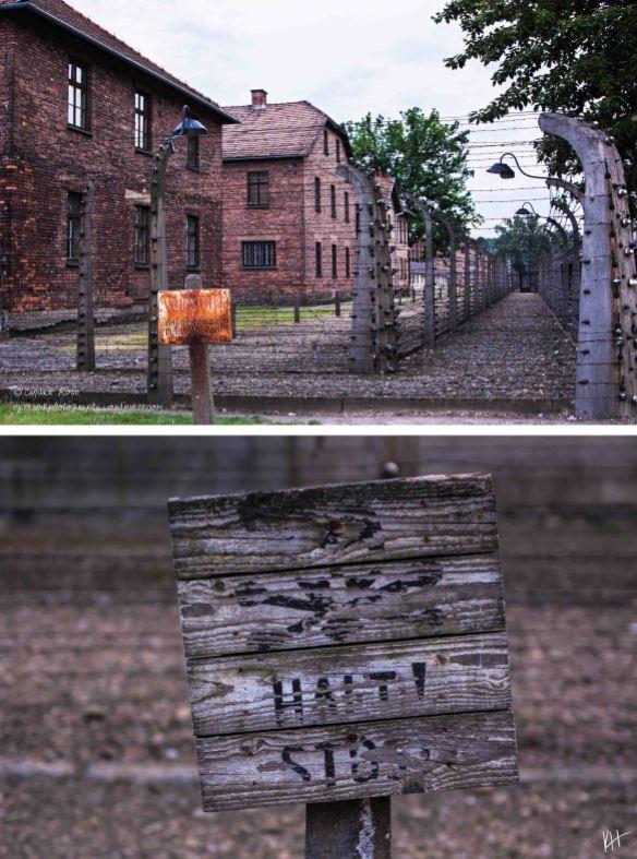 selah_candace_rose_Auschwitz_08